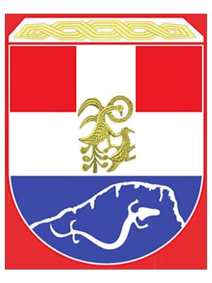 Opština Ravno